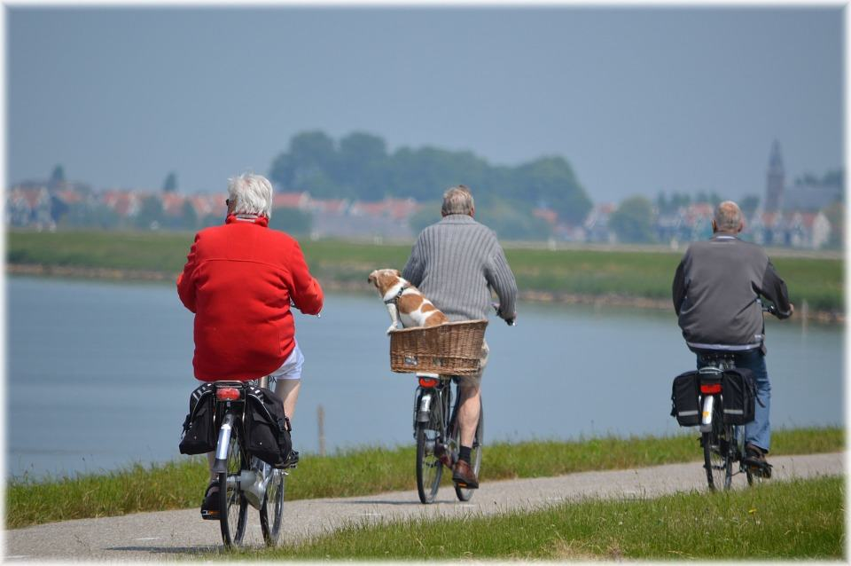 Retirement Activities – Things To Do In Your Retirement